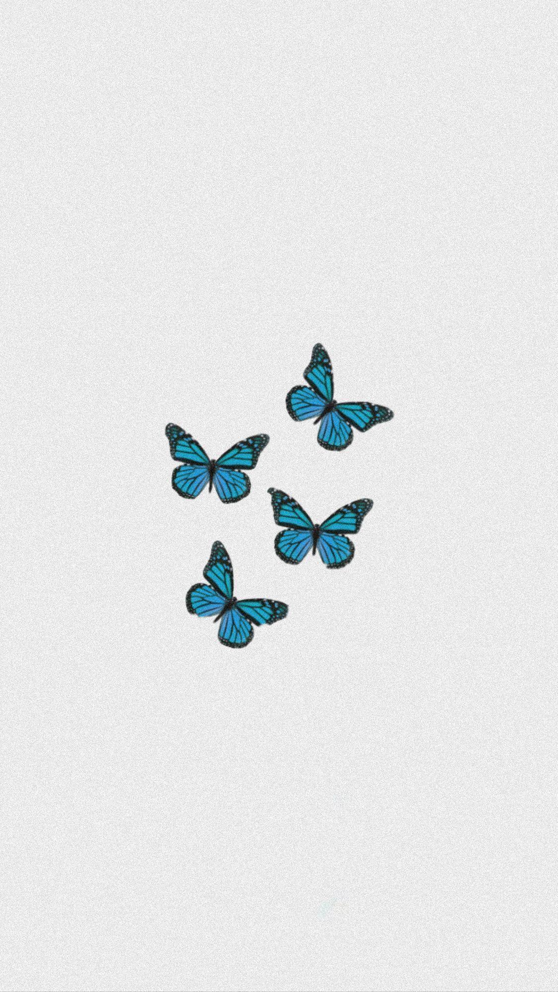 Butterfly Iphone Wallpaper In 2020 Iphone Wallpaper Pattern Butterfly Wallpaper Iphone Aesthetic Iphone Wallpaper
