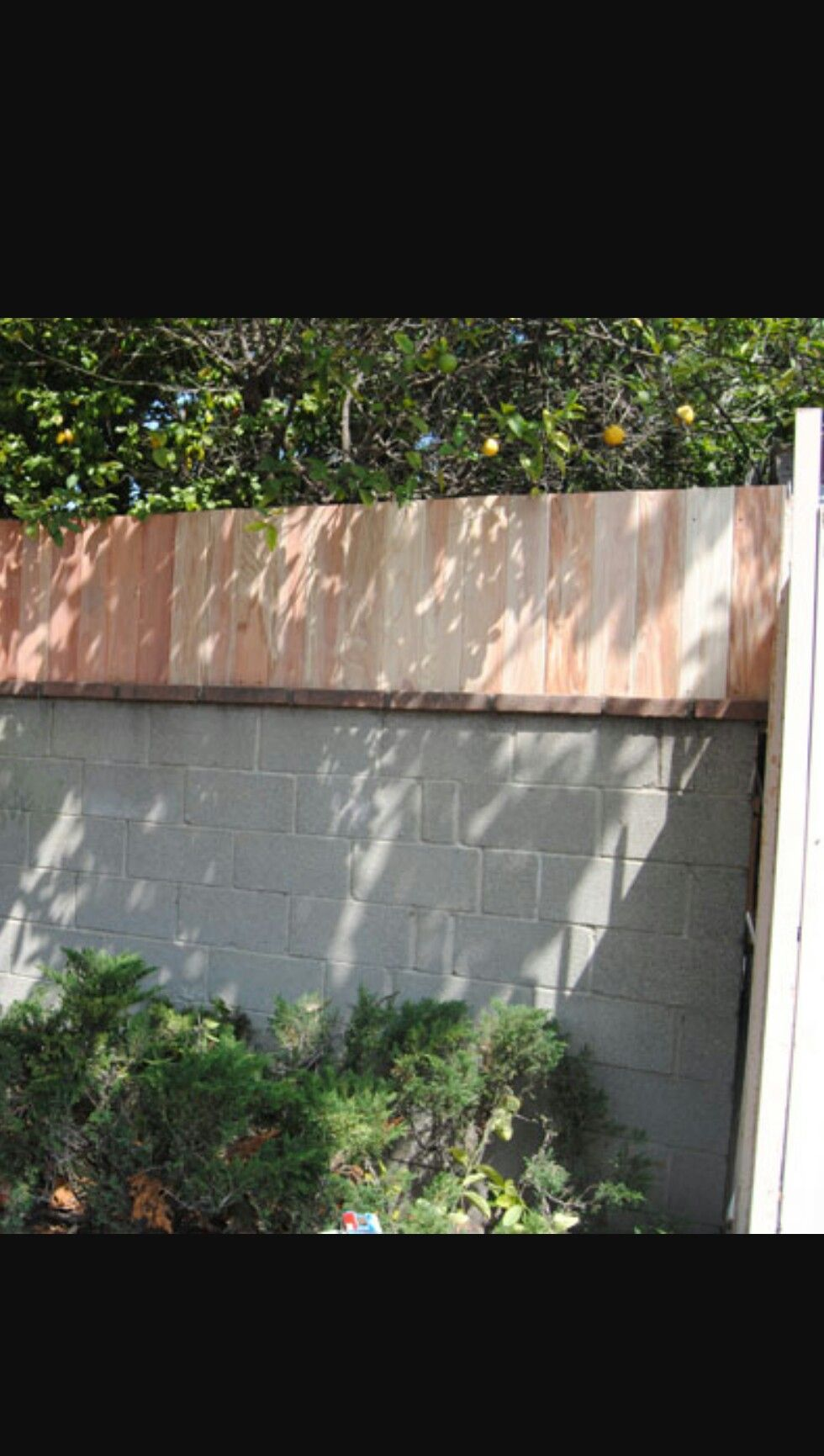 Block Wall Fence Toppers Fence Toppers Backyard Fences Outdoor Shade