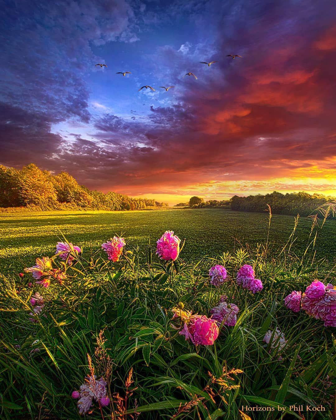 Phil Koch On Instagram Imagine No Limitations Wisconsin Horizons By Phil Koch Landsc Spring Landscape Photography Spring Landscape Nature Photography