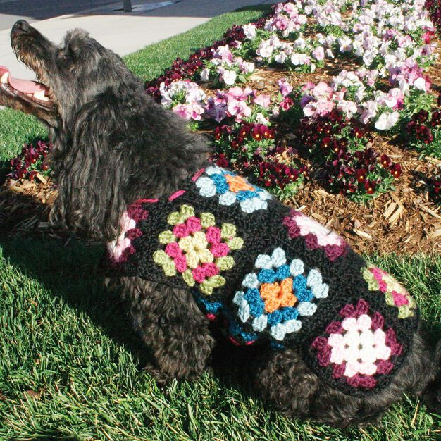 Free Crochet Dog Sweater Pattern National Dog Day