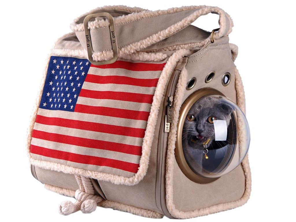 This Is the Astronaut-Inspired Backpack You Never Knew Your Cat Needed foto