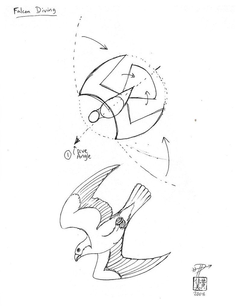 Draw A Falcon Diving Bird Line Drawing Falcon Drawing Bird Drawings