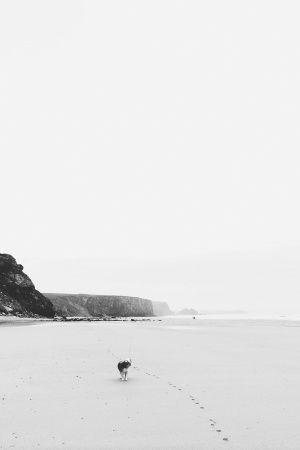 First footprints in the sand @Shinsuke Okamoto Mizuguchi Bay Hotel #vscocam