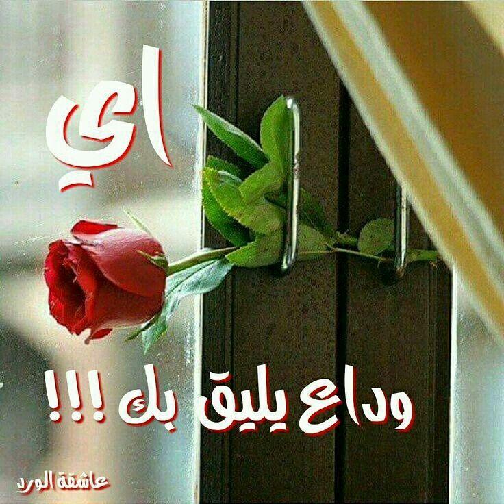 مازلت غالي وما زال قدرك في خفوقي ذكرياتك تزيده ومازلت بالحيييل توجع لما تمر في بالي Beautiful Rose Flowers Beautiful Flowers Wallpapers Beautiful Flowers