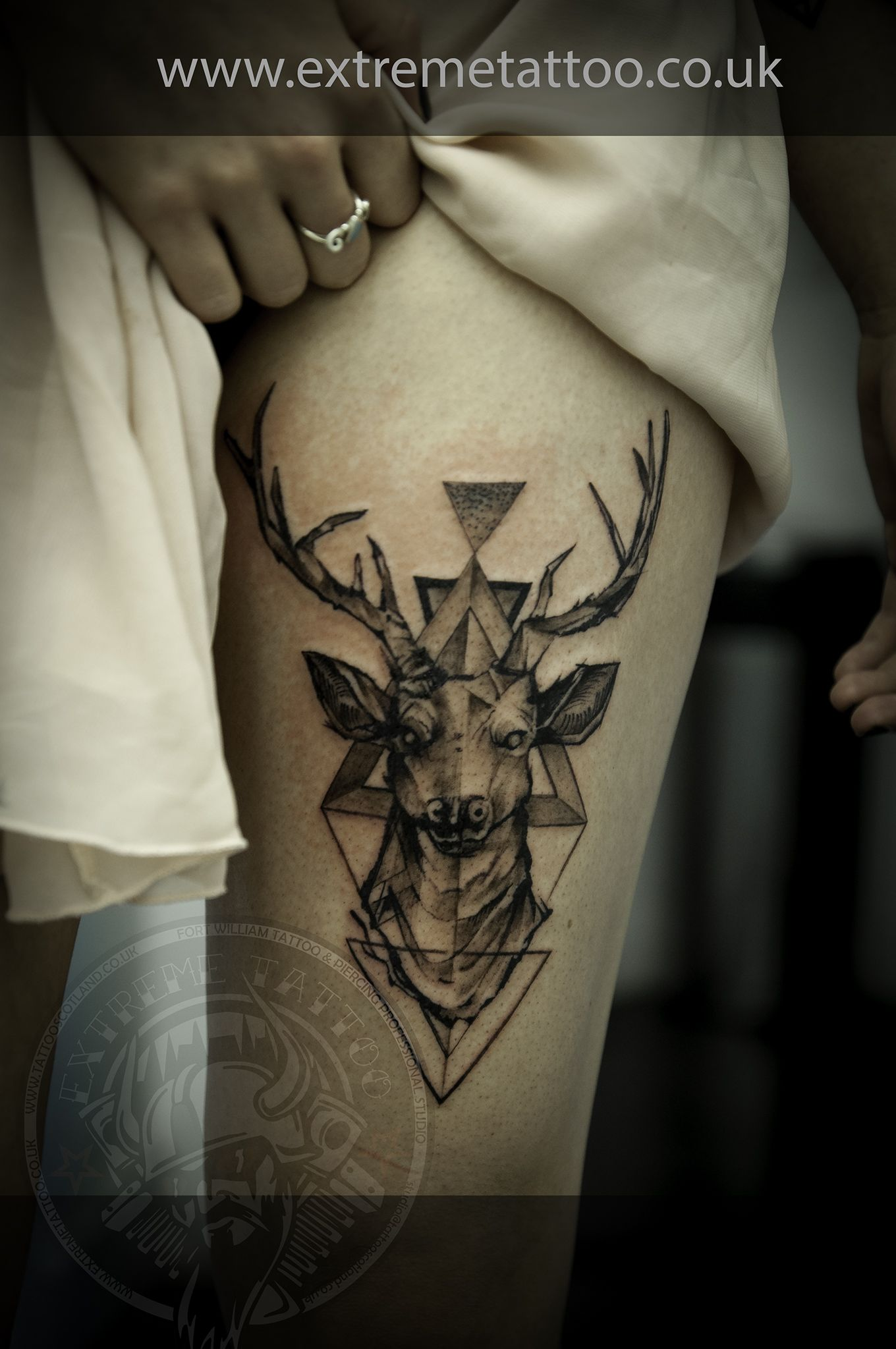 dear tattoo stag tattoo dotwork tattoo gabi tomescu