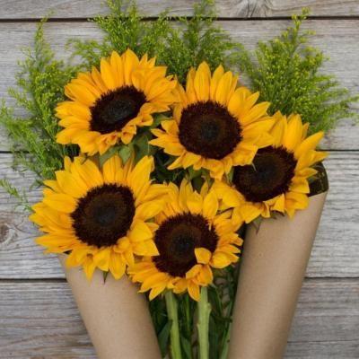 Hello Sunshine 5 Sunflowers Bouquet Beautiful Flowers Sunflowers And Daisies Sunflower
