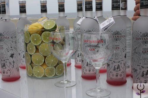 Santamania en el BCN Gin Show  http://www.negraflor.com/2014/07/14/santamania-en-bcn-gin-show/