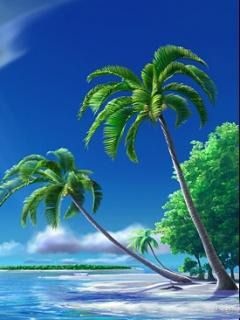Download Free Tropical Island Mobile Wallpaper Contributed By