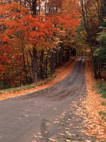 Photographic Print: Country Road in Autumn, Vermont, USA Poster by Charles Sleicher : 24x18in