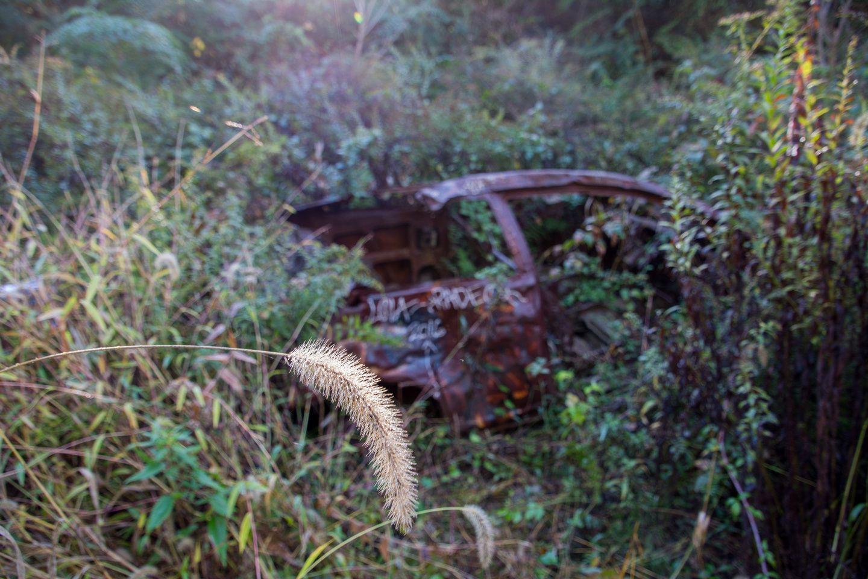 Abandoned at Playwicki Park Bucks County PA | Sharing the