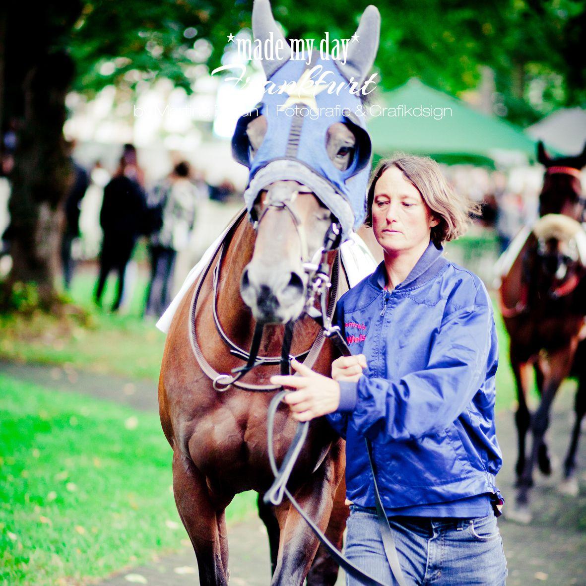 Pferderennen Frankfurt