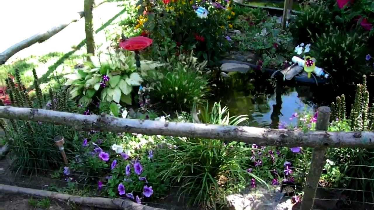 Amazing Outdoor Pond And Turtle Habitat Full Of Flowers Very Peaceful And Beautiful Turtles
