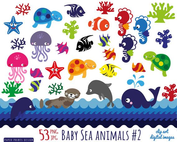 53 Baby Sea Animals Clipart Sea Animals Patterns Clipart Dolphin Seahorse Starfish Sea Otter Whale Sea Turtle Sea Animals Animal Clipart Free Animal Clipart