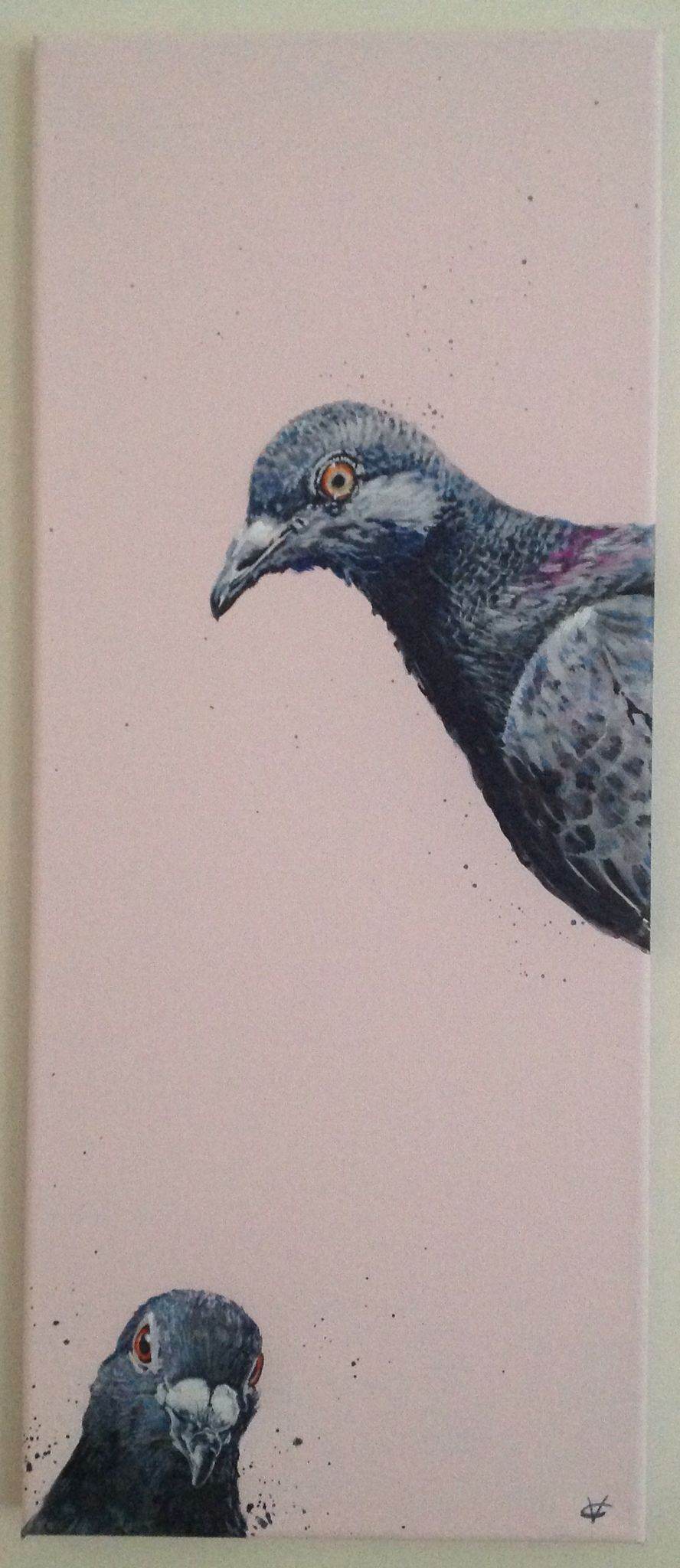 Oh Hello! Pigeon art. Water colour on canvas
