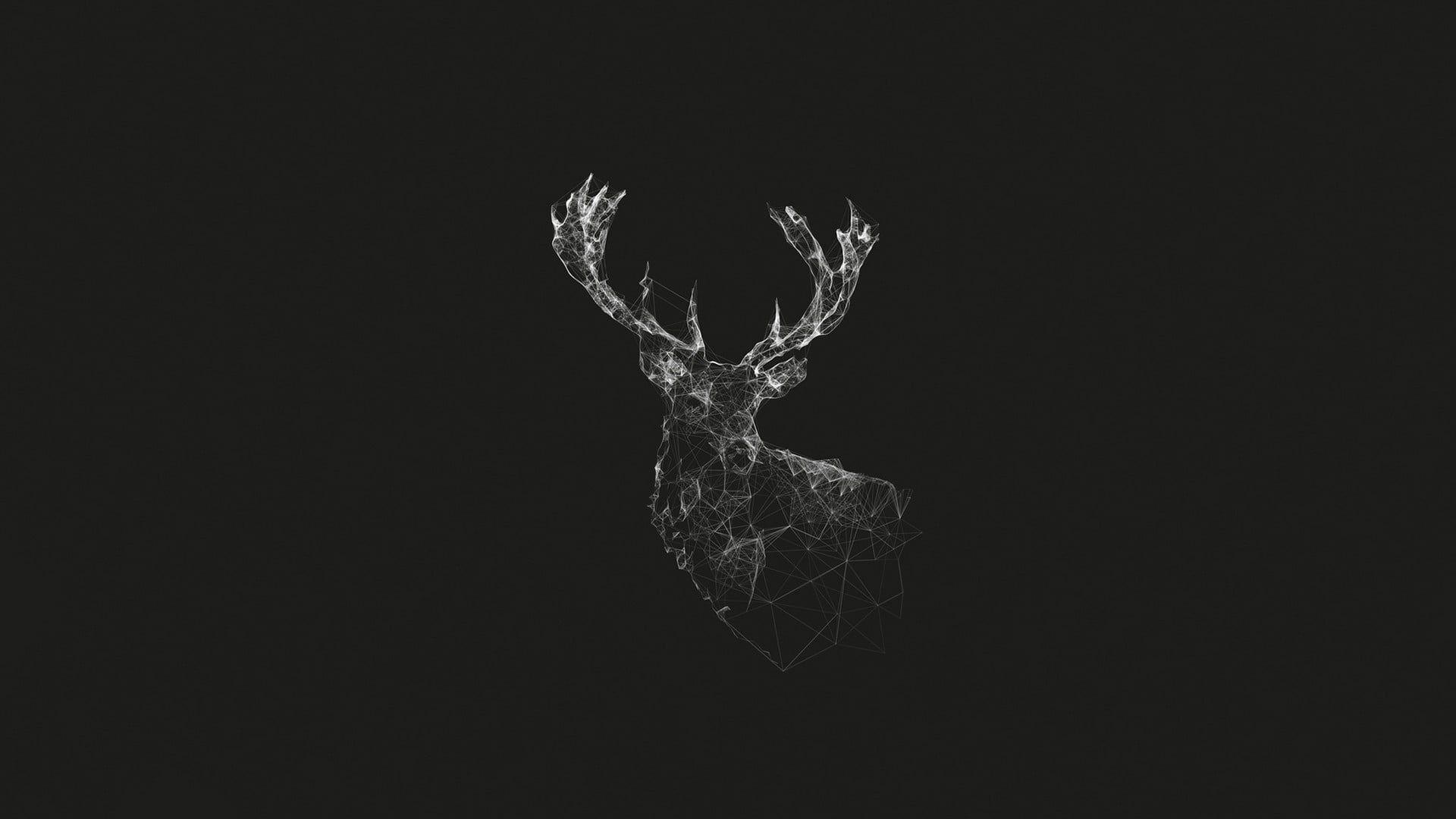 Black Reindeer Illustration Grayscale Illustration Of Reindeer Deer Geometry Wireframe Artwork Monochr In 2020 Deer Wallpaper Wallpaper Pc Cute Desktop Wallpaper