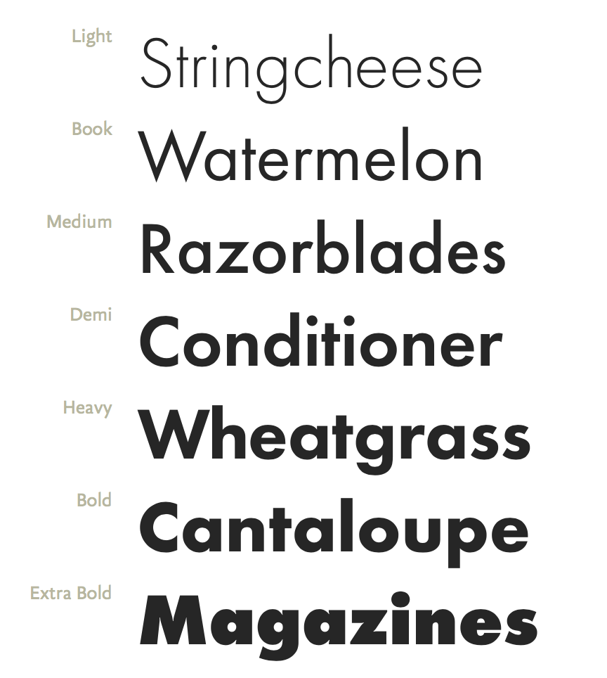 Futura PT | A Way With Words (Premium) | Font shop, Style guides