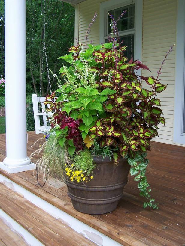 Cottage Gardens We Love