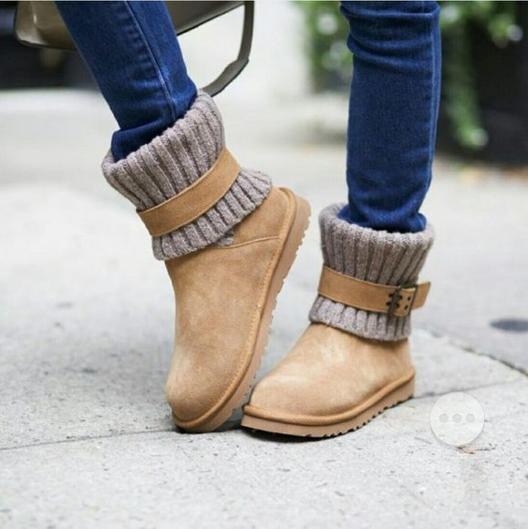 cambridge uggs on sale