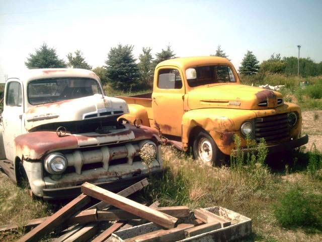 Pair of Ford Pickups Photo Picture