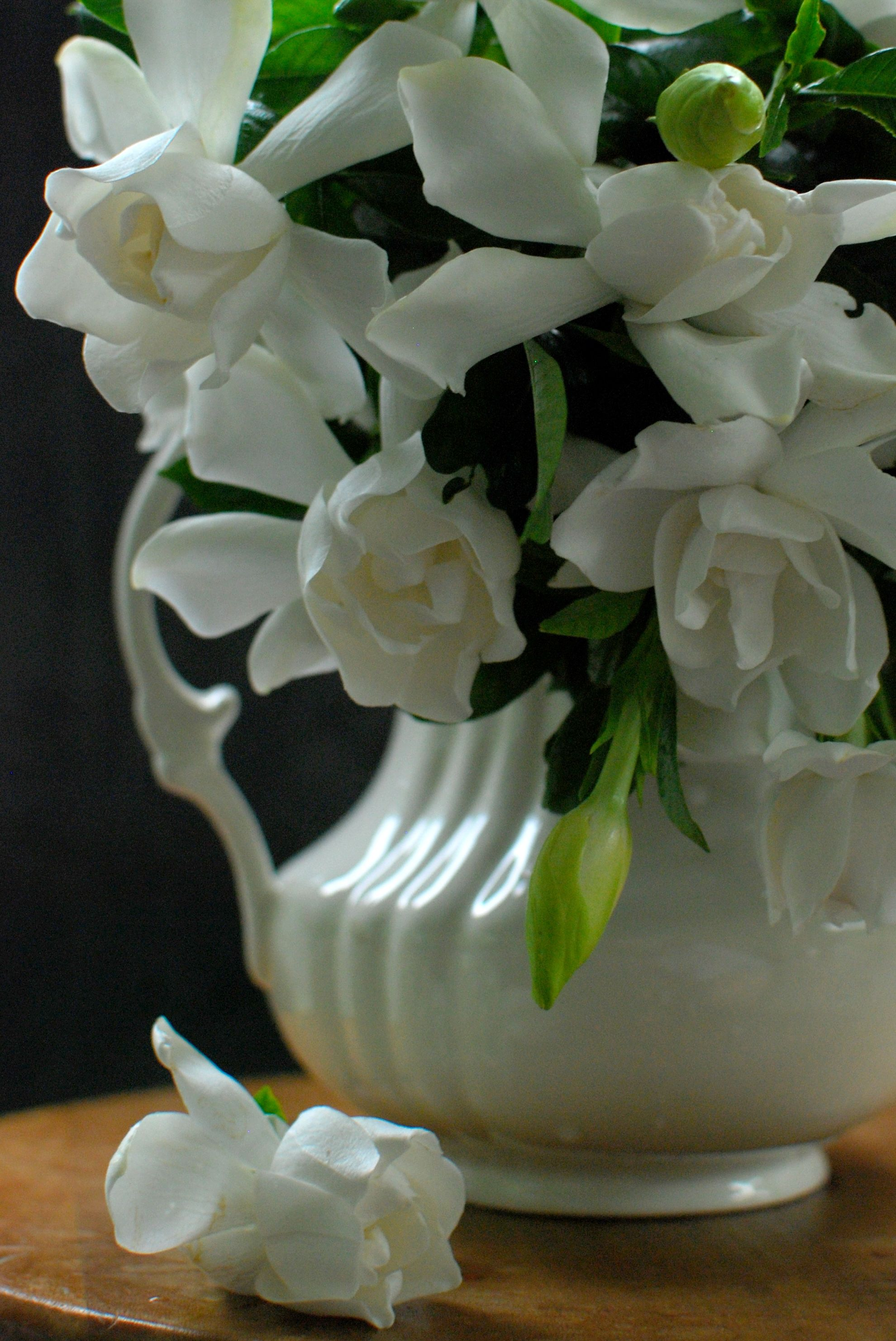 Gardenias From The Garden I Put Some In Every Room Then It