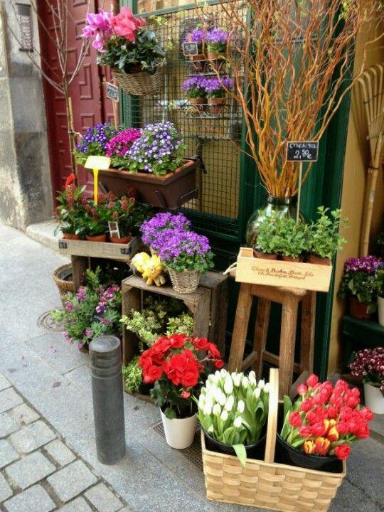 Florecitas de Madrid