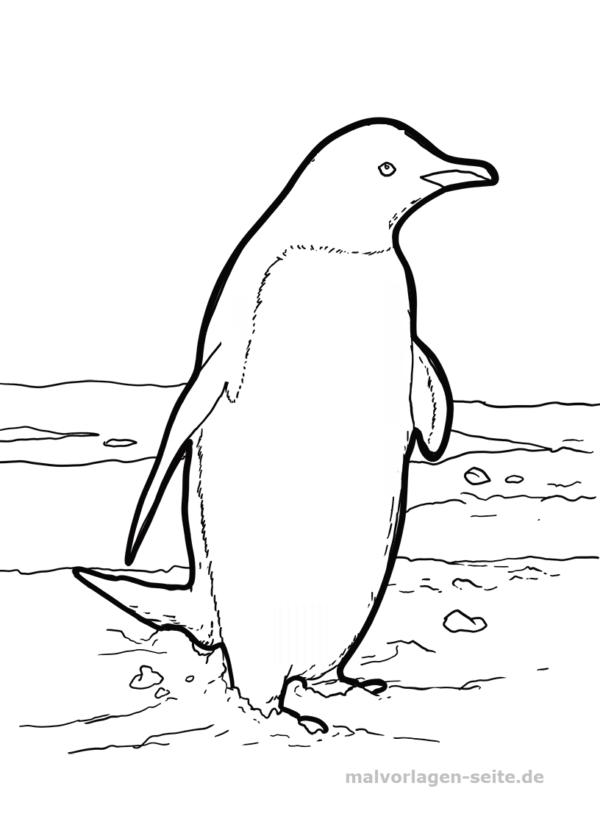 Malvorlage Pinguin | Malvorlagen - Ausmalbilder | Pinterest