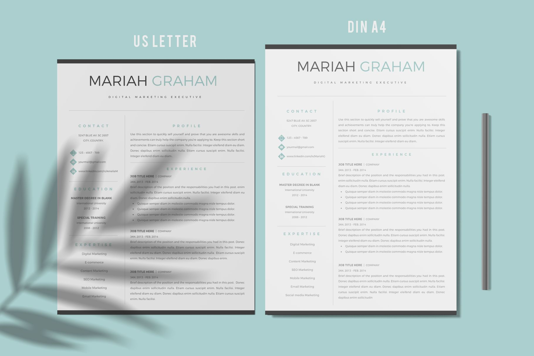 Creative Resume Templates For Ms Word And Mac Pages Professional Resume Templates And Ma Simple Resume Template Creative Resume Templates Simple Resume Format