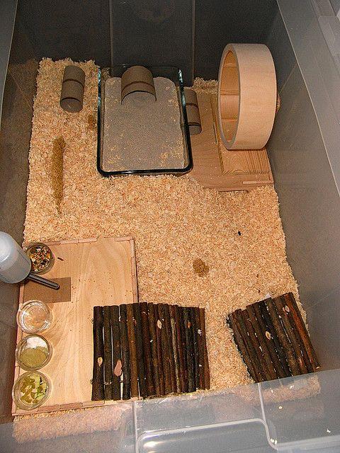 Günstiges Zwerghamster Gehege Aus Ikea Samla Box 80x50cm