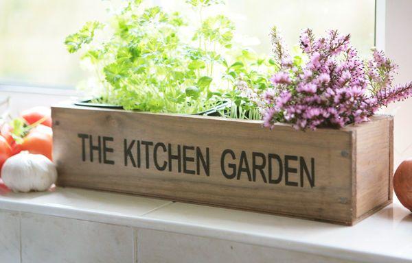 Kitchen Herb Wooden Planter Window Box Garden Indoor Plant Pot Kit