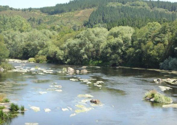 Río Miño-Lugo-Galicia- Spain