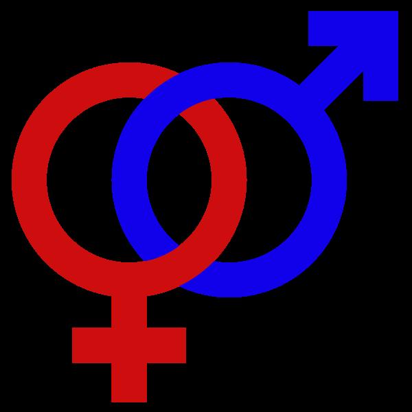 Study suggests STEM faculty hiring favors women over men | InsideHigherEd.com