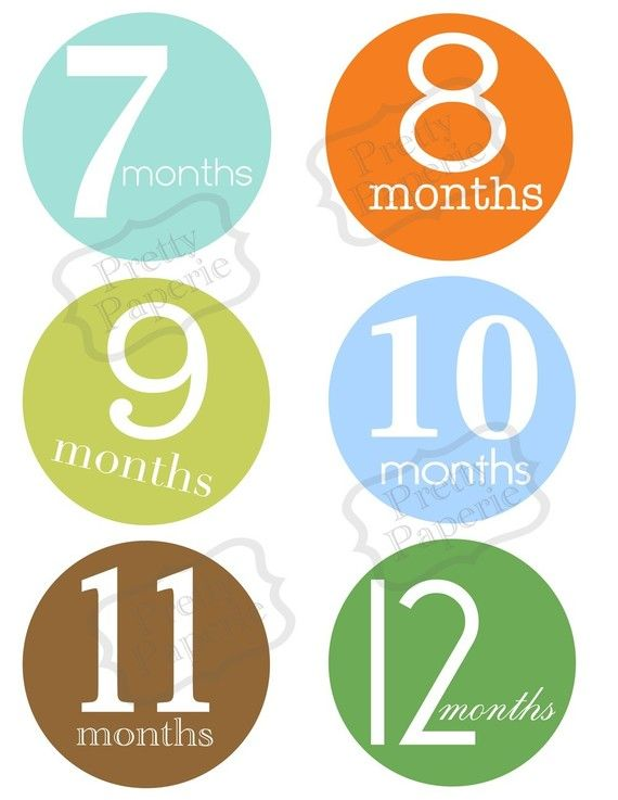 Instant DOWNLOADBirth to 1 year month by month by theprettypaperie, $12.00