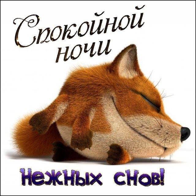 Бобрами, спокойной ночи лиса открытки