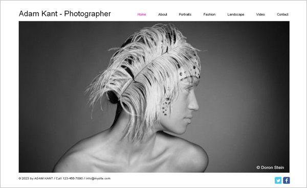 35 Best Free Online Portfolio Themes for Photographers | Online ...