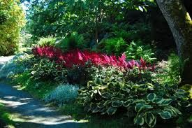 Hostas Around The Foundation Google Search With Images 400 x 300