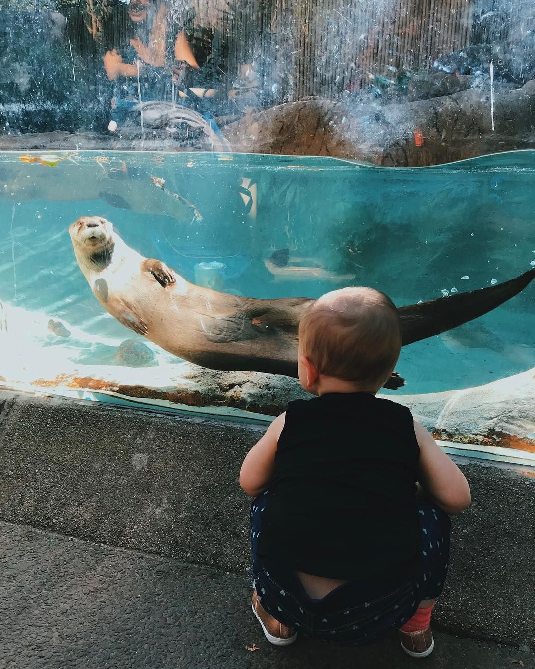 Providence Rhode Island Beaches: From Visiting Roger Williams Park Zoo And RISD Museum To