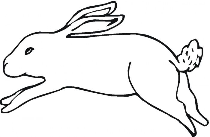 Running Jack Rabbit Coloring Page Super Coloring Coloring Pages Color Free Printable Coloring Pages