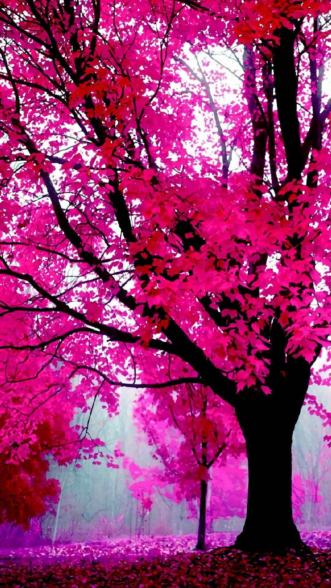 Pin By Marie Rosado On Nature Tree Wallpaper Pink Tree