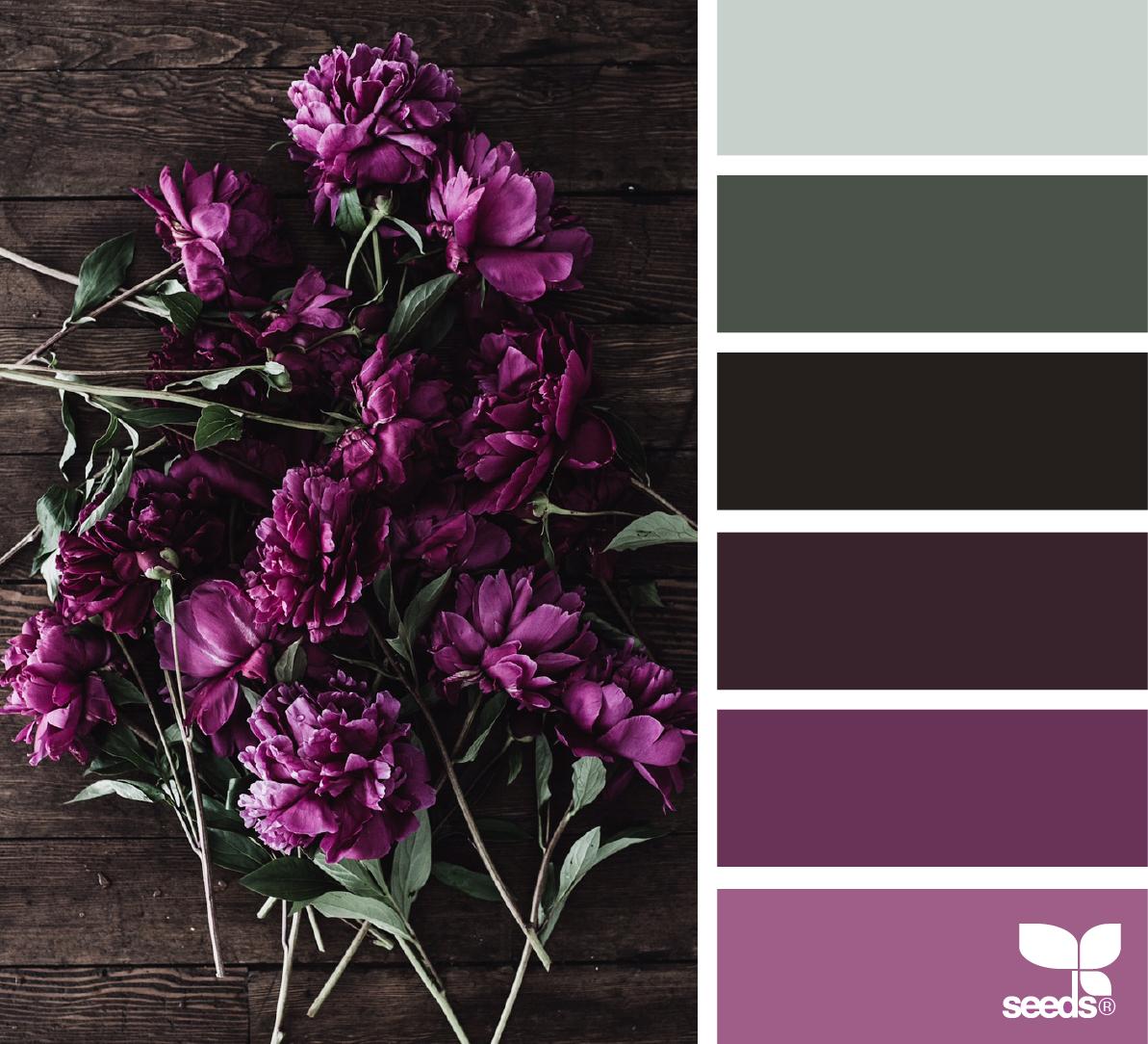 Farbpalette Grau, Farbschemata Und