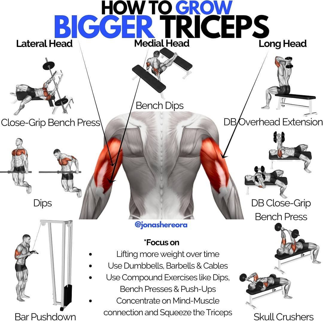 The Best Triceps Workout for Bigger, Stronger Arms