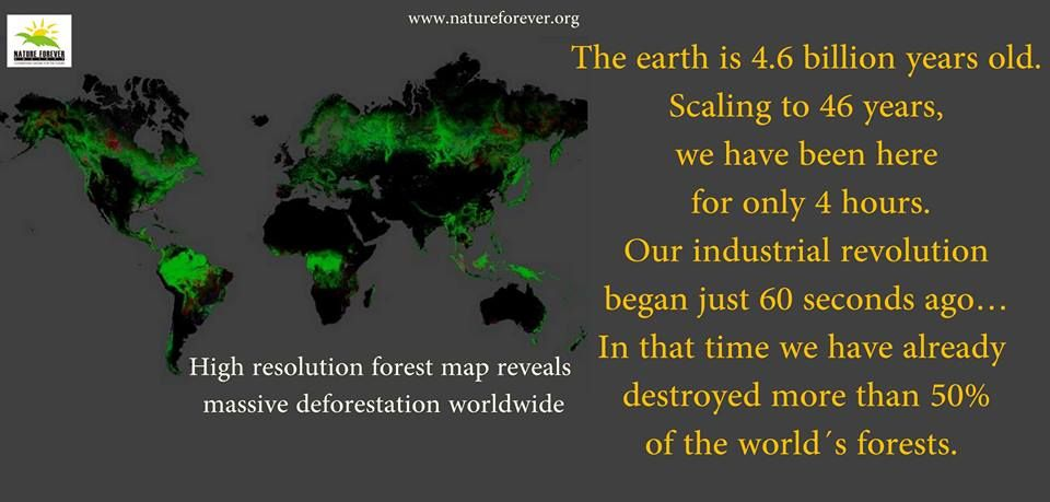 The kind of destruction we have done to our planet can be imagined by this comparison.