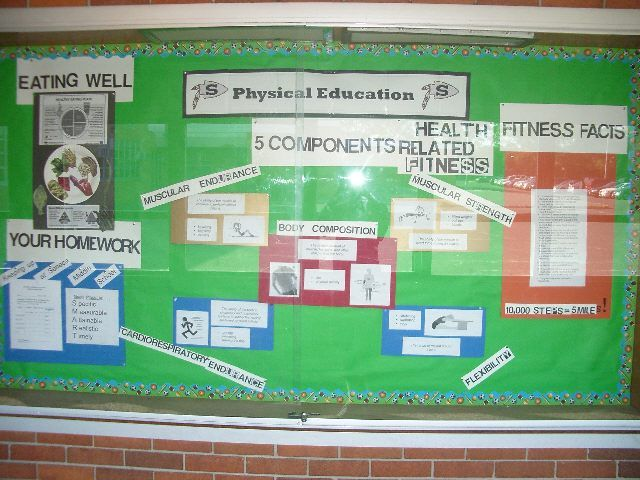 components of health related physical fitness image my world  5 components of health related physical fitness image · pe ideasshoeessay
