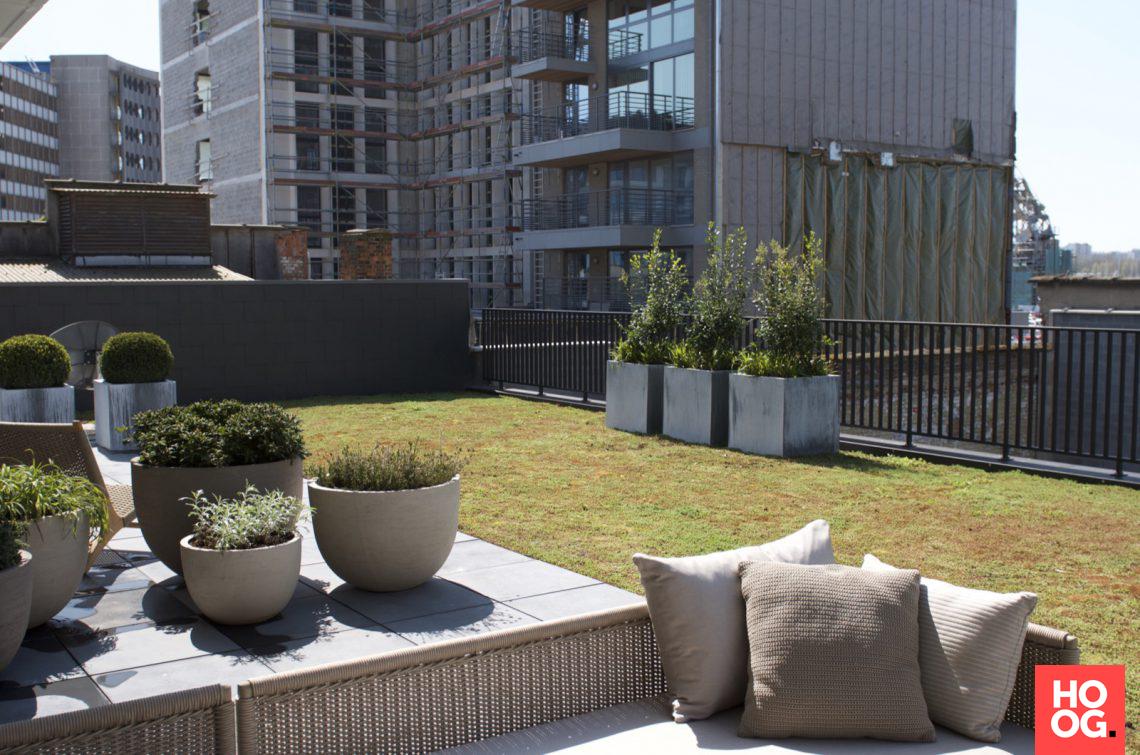 Groenseizoen tuinen ontwerpstudio daktuin met jacuzzi