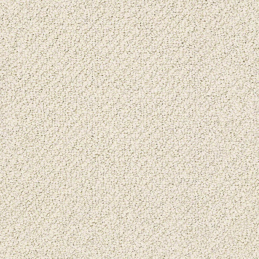 Home Decorators Collection Carpet Sample Free Rein Color