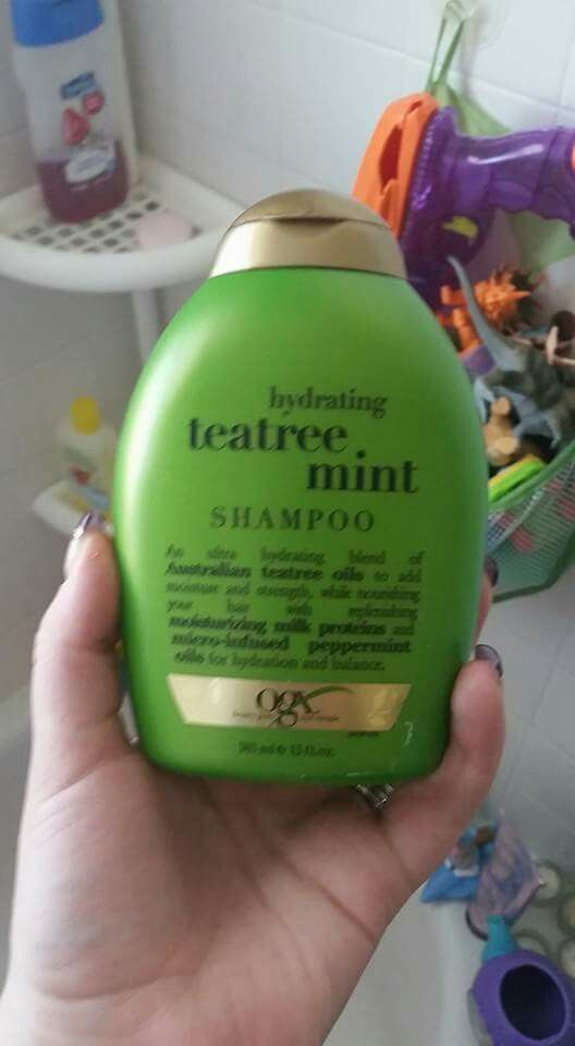 Keep Lice Away With Teatree Oil Shampoo Lice Prevention Shampoo