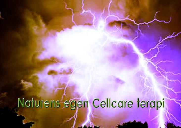 Cellcare 3A-apparatet virker ved at producere et koncentreret felt af negativt ladede ioner, der blæses ind på kroppens akupunkturpunkter og meridianer så kroppens organer påvirkes positivt, og cellestofskiftet bedres. Det er en behandlingsform der er opstået som en inspiration om at koble principper fra akupunktur og homøopati sammen. Cellcare terapien, virker på den måde at det stabiliserer energibaner og kirtler for til slut at genskabe styrken i dit immunforsvar.