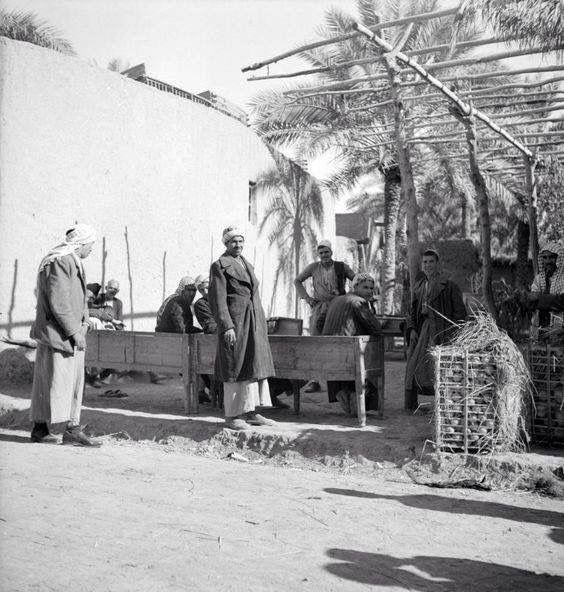 أحد مقاهي مدينة بعقوبةـ ديالى عام 1951 انظروا يمين الصورة ولاحظوا كيف كان البرتقال يحمل في الاقفاص برتقال ديالى المميز Baghdad Photo Babylon