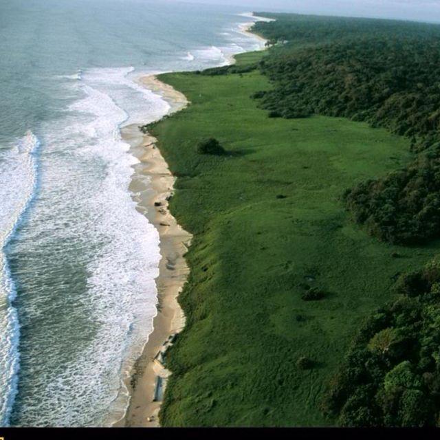 Coastline, Loango National Park ~ Loango, Gabon Republic