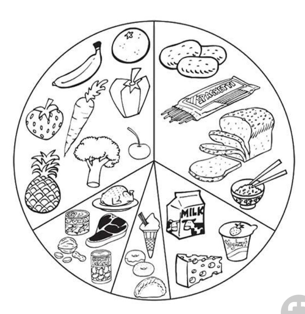 Packaging Of Kids Health Pack Booklet Or Or Tin Boxed Coloring Book Draw Food Coloring Pages Food Coloring Preschool Food [ 1041 x 1009 Pixel ]