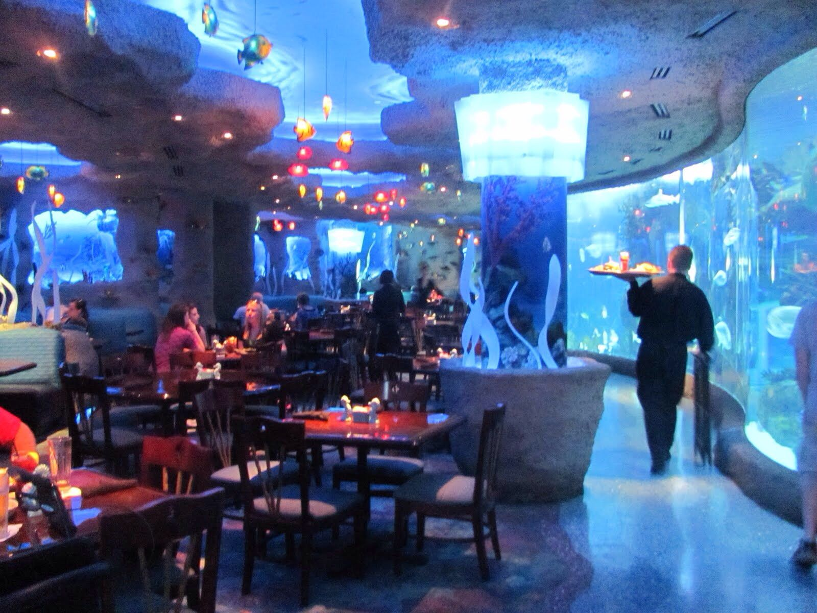Aquarium Restaurant Nashville Tn Aquarium Restaurant